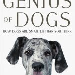 Brian Hare y Vanessa Woods: Genios. Los perros son más inteligentes de lo que pensamos.
