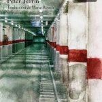 Peter Terrin: El vigilante