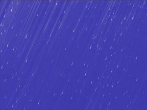 Afrofuturo(s). Purple Rain. Libros Prohibidos