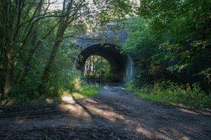 Historias del camino. Puente. Libros Prohibidos