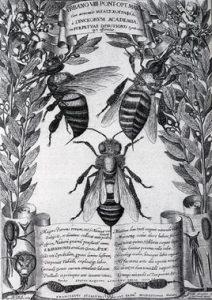 Melissographia. Libros Prohibidos