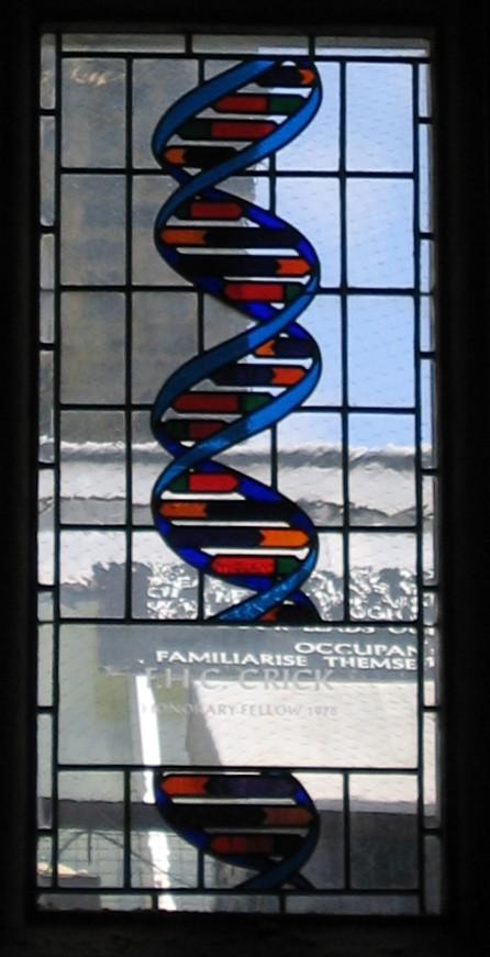 Alucinadas V. ADN. Libros Prohibidos.