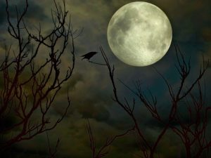 cuervo-y-luna-libros-prohibidos