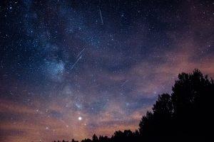 Estrellas fugaces de noche con un bosque de fondo